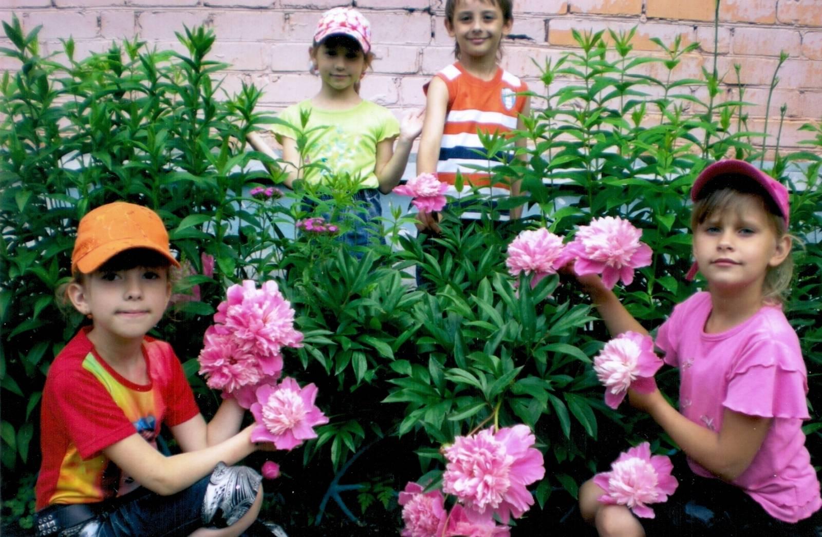 Дети сажают цветы картинки 1